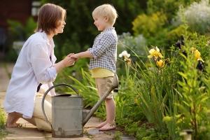 Chrysamed Insektisit evinizin içine ve dışına, bahçe, balkon gibi her alanda kullanılabilir.